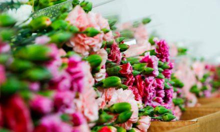 Dünya annelerine Antalya'dan 45 milyon dal çiçek