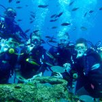 Turistler, Antalya'nın sualtı zenginliklerini keşfediyor
